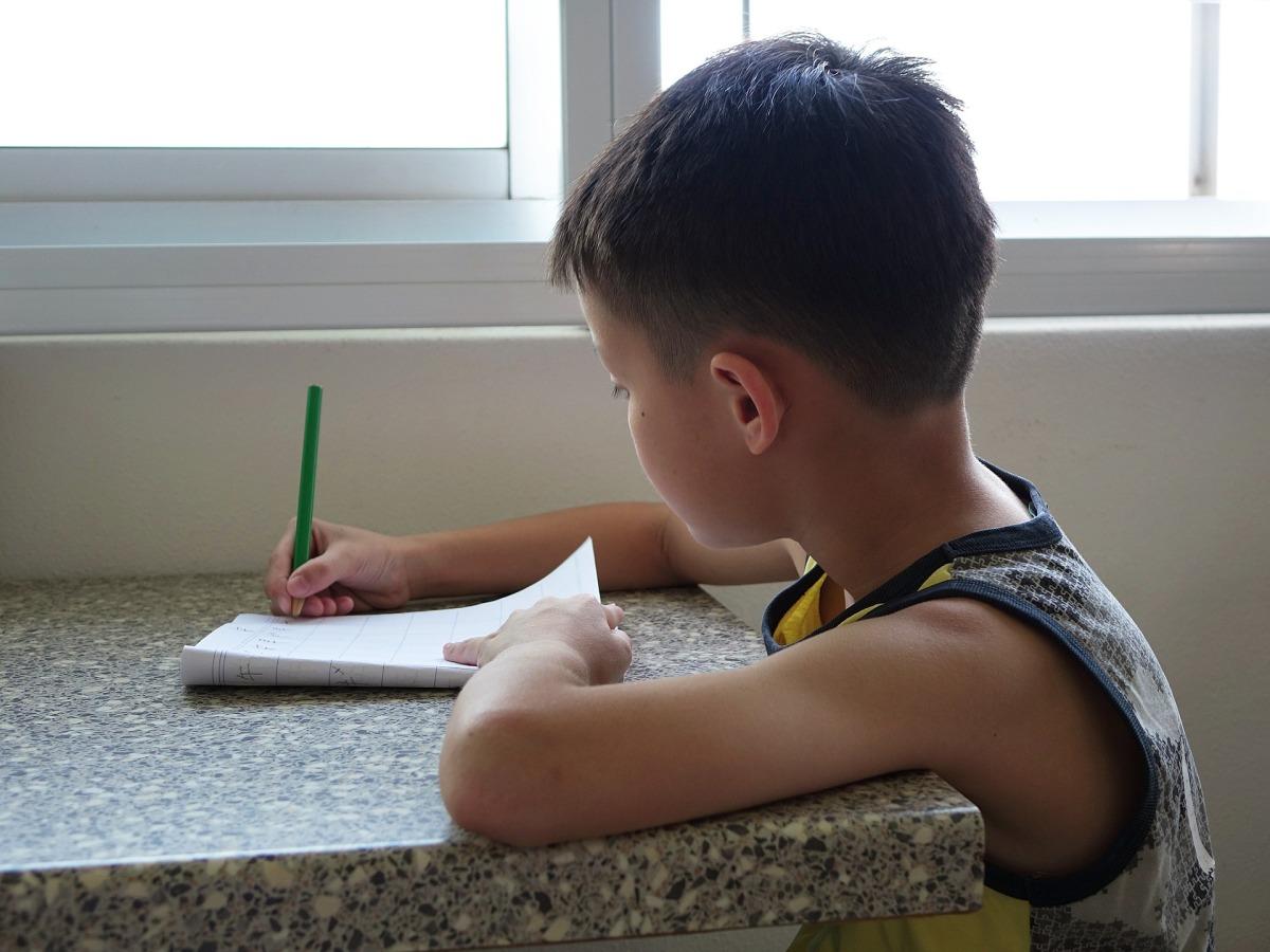 "'Homeschooling': a oportunidade de escolha como ""medida protetiva"""